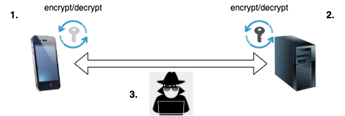 img01_intercept_traffic_options.png